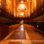 Barcelona Cathedral 3